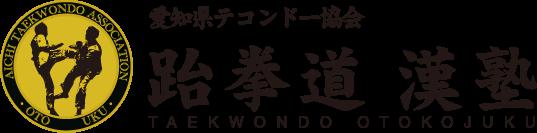 WTFテコンドー漢塾 – 元日本代表選手が直接指導 オリンピック正式競技テコンドーを習おう。愛知県瀬戸市。